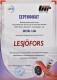 Сертификат на Пружина подвески Lesjofors 4014910 для Chrysler Voyager