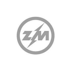 Тяговое реле стартера ZM ZM590