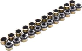 Комплект сальников клапанов Reinz 12-31306-05